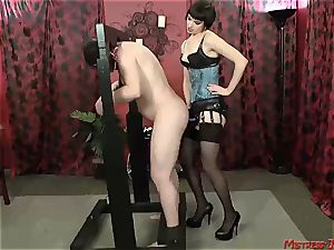 Many femdom dominatrixes dominate submissive males